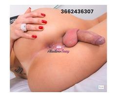 Trans Gabriella bellezza brasiliana porcella videochiamata 3662436307
