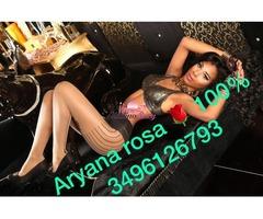 Trans Aryana piena di latte nutriente 3496126793