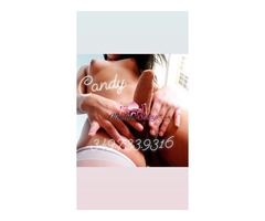 Trans Top Trans Candy 3497339316