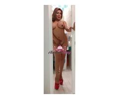 Trans stefania bravissima massaggiatrice 3297557734